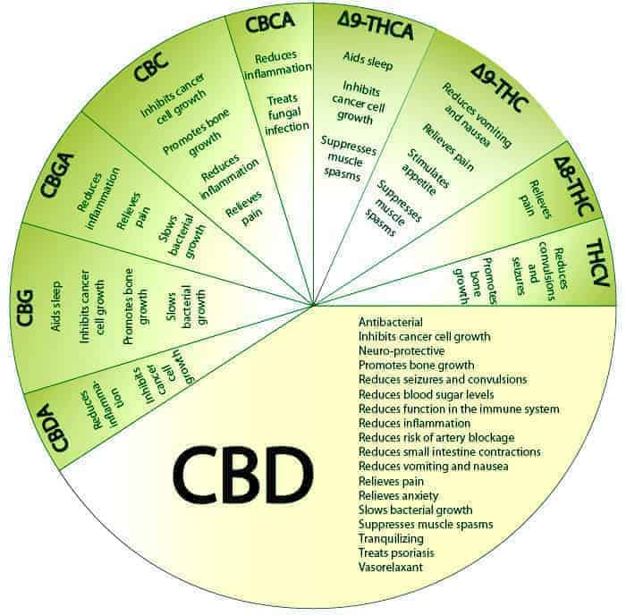 CBD Hemp Oil Diagram