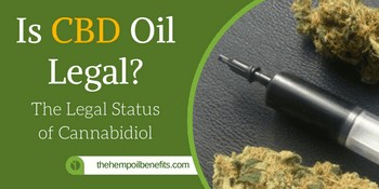 Is CBD Oil Legal? The Legal Status Of Cannabidiol in 2018