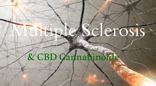 CBD for multiple sclerosis