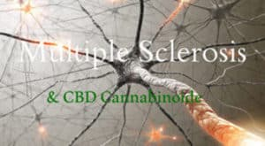 cbd multiple sclerosis