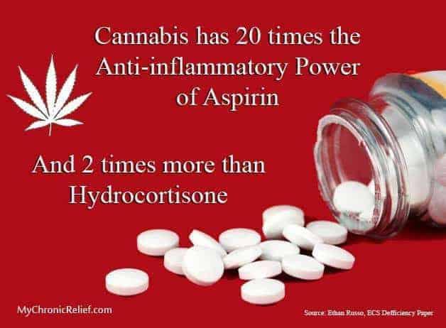 CBD Anti Inflammatory