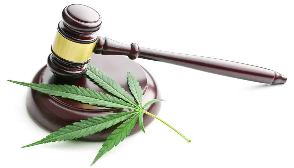 medical cannabis and federal law marijuana