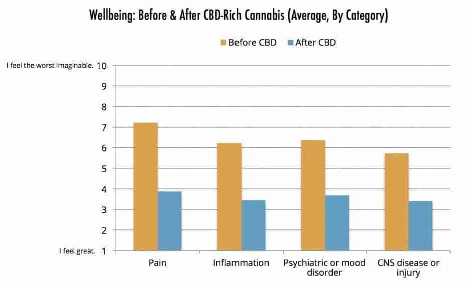 CBD Survey