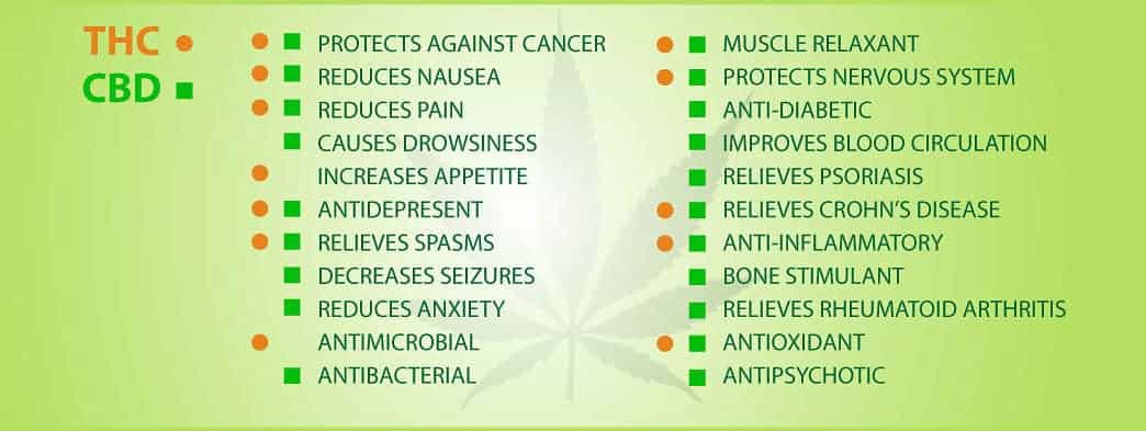THC abd CBD Benefits