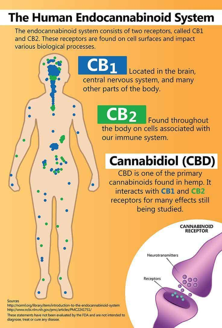 Cannabinoid properties
