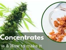 cbd concentrates