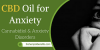 CBD Oil for Anxiety – Cannabidiol & Anxiety Disorders