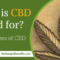What is CBD used for – A list of known uses of CBD