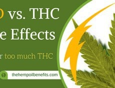 CBD for too much THC