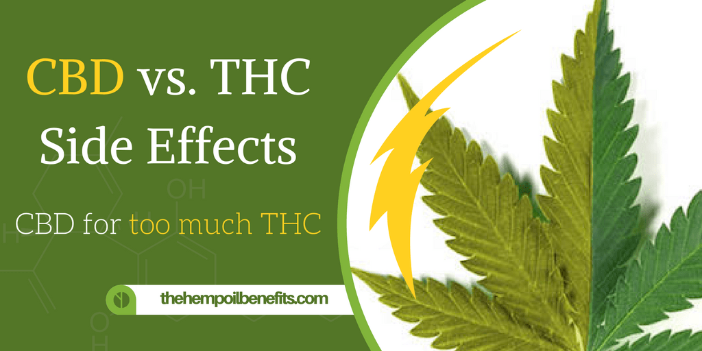 Cbd Vs Thc Effects Cbd For Too Much Thc The Hemp Oil