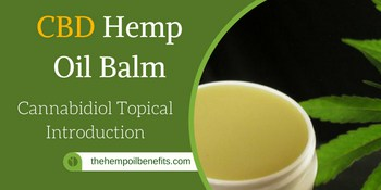 CBD Hemp Oil Balm FI