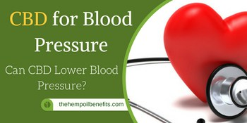 CBD Oil for Blood Pressure – Can CBD Lower Blood Pressure?