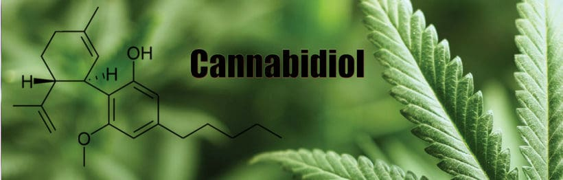 Cannabidiol - The Hemp Oil Benefits