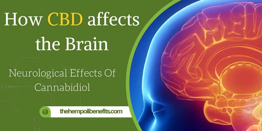 How CBD affects the Brain