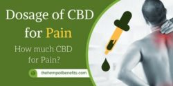 Dosage of CBD Oil for Pain – How much CBD for Pain?
