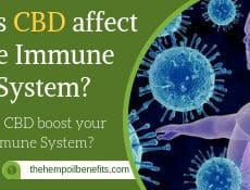 Does CBD affect the immune system