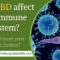 How does CBD affect the Human Immune System?