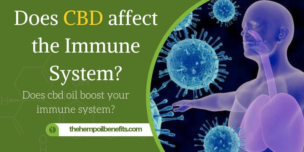 How does CBD affect the Human Immune System
