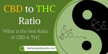 CBD to THC Ratio – What is the best CBD : THC Ratio?
