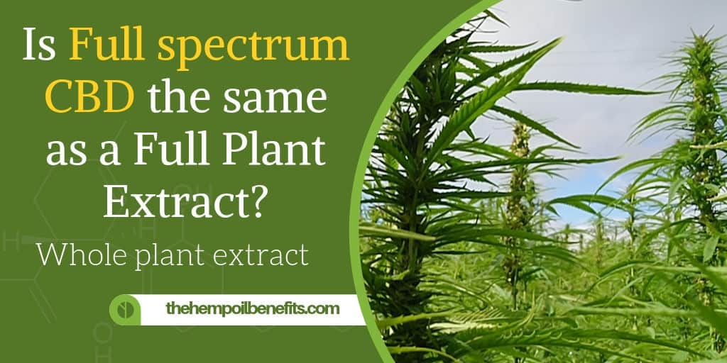 Is Full spectrum CBD Oil the same as a Full Plant Extract