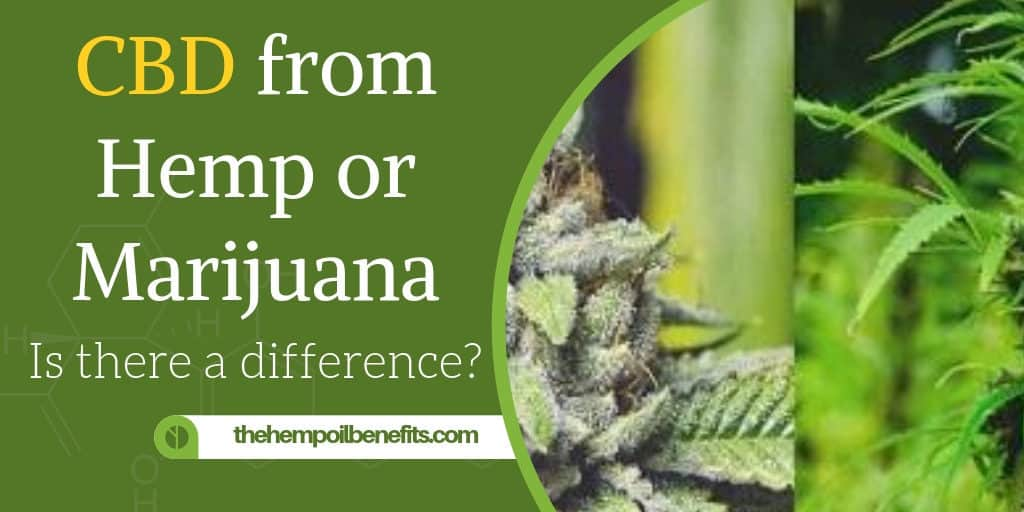 CBD from Hemp or Marijuana – Is there a difference
