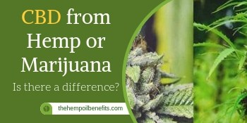CBD from Hemp or marijuana