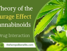 Entourage Effect of Cannabinoids FI