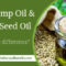 CBD Hemp Oil & Hemp Seed Oil – What is the difference?