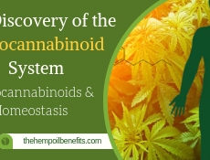 The Discovery of the Endocannabinoid