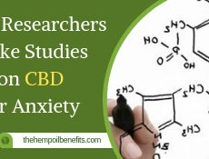 Why Researchers make Studies on CBD for Anxiety FI