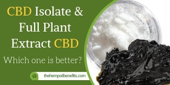 CBD Isolate & Full Extracted CBD Oil