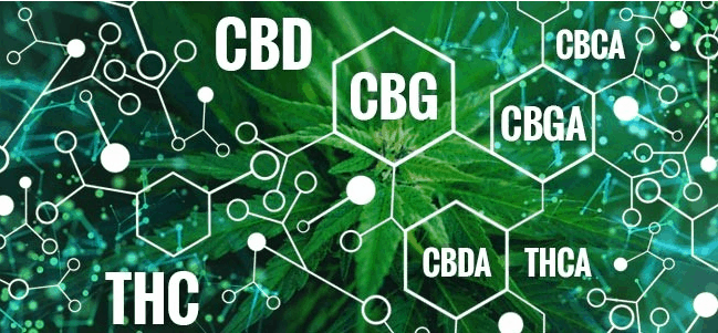 Enzymes as a catalyst for conversion to other cannabinoids