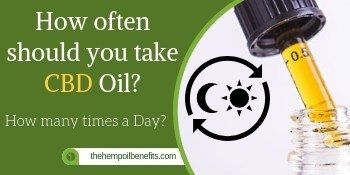 How many times a Day to use CBD Oil