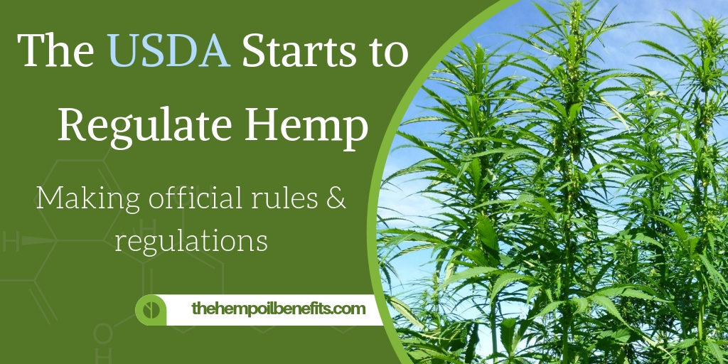The USDA Starts to Regulate Hemp