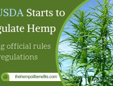 The USDA Starts to Regulate Hemp fi