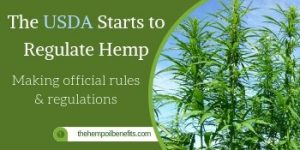 The USDA has finally started on making official rules & regulations for growing Hemp
