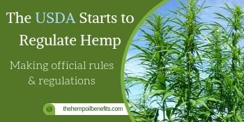 The USDA Starts to Regulate Hemp fi