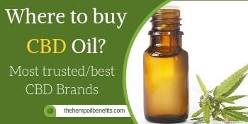 Why Should You Use CBD Vape Oil?
