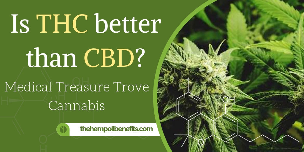 Is THC better than CBD?