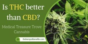 Is THC better than CBD? Medical Treasure Trove Cannabis