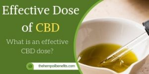 what is an effecitve dose of cbd fi