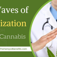 Medical Cannabis: The Waves of Legalization