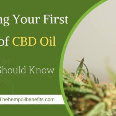 What You Should Know About Purchasing Your First Bottle of CBD Oil