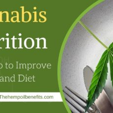 Cannabis Nutrition: Using Hemp to Improve Health and Diet