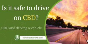 Is It Safe To Drive On CBD?