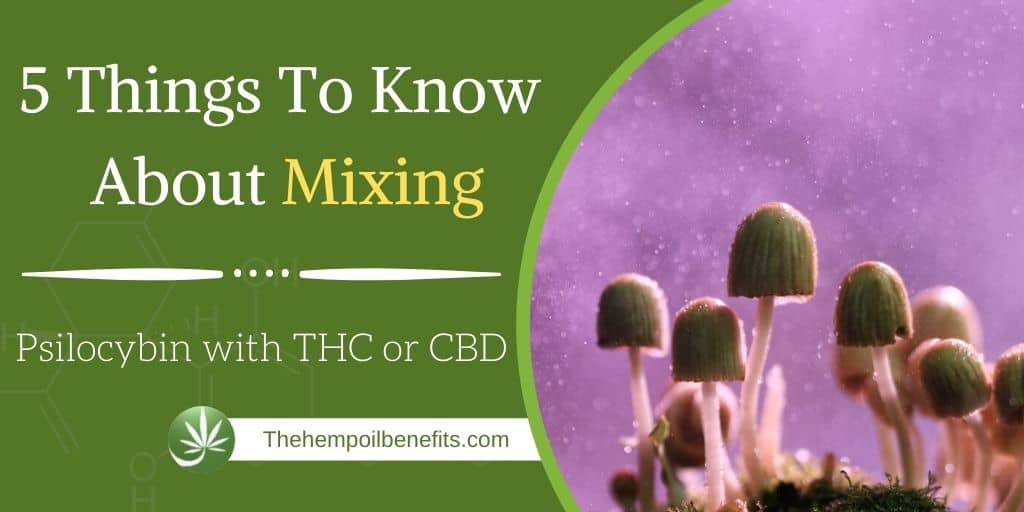 5 Things To Know About Mixing Psilocybin with THC or CBD