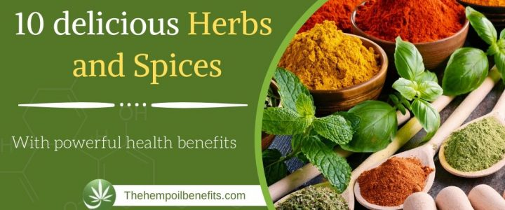 10 delicious herbs and spices with powerful health benefits