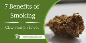 7 Benefits of Smoking CBD Hemp Flower