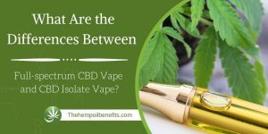 What Are the Differences Between Full-spectrum CBD Vape and CBD Isolate Vape?